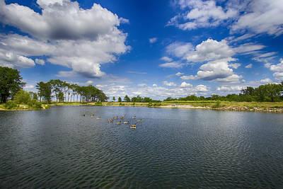 Saint Charles Digital Art - Geese On Lake 15 by Bill Tiepelman