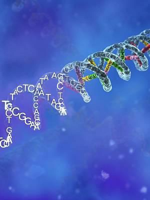 Heredity Photograph - Genetic Code by Equinox Graphics