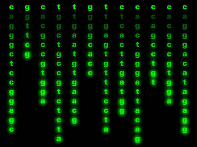 Matrix Code Photograph - Genetic Sequence by Laguna Design