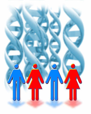 Genetic Sexuality Art Print by Victor Habbick Visions