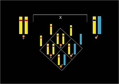 Genetics Of Colour Blindness, Artwork Art Print by Francis Leroy, Biocosmos