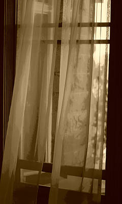 Photograph - Gentle Breeze In Sepia by Marilyn Wilson