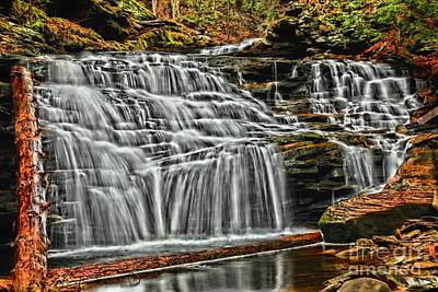 Photograph - Gentle Cascades by Adam Jewell