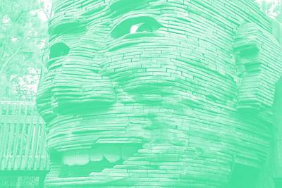 Photograph - Gentle Giant In Negative Green by Rob Hans
