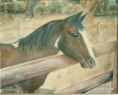 Painting - Gentle Horse by Geri Jones