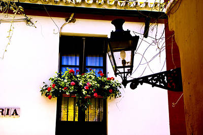 Art Print featuring the photograph Geraniums And Light by Rick Bragan