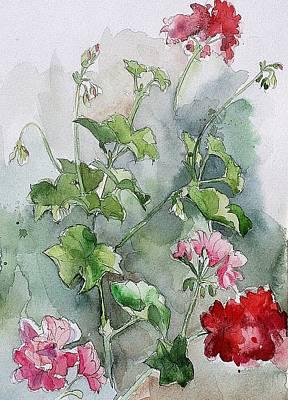 Geraniums Art Print by Stephanie Aarons