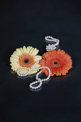 Gerberas With Pearls Art Print by Joana Kruse