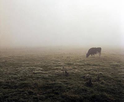 Photograph - German Border by Jan W Faul