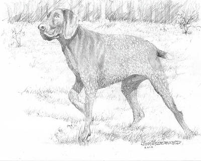 Art Print featuring the drawing German Shorthaired Pointer by Jim Hubbard