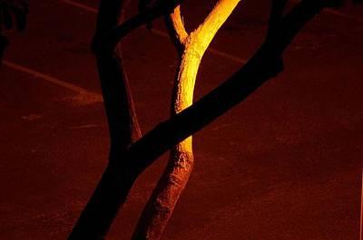 Photograph - Getting Dark 3 by Archangel Michael