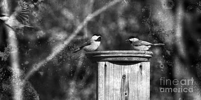 Chickadee Digital Art - Ghost Flight by Sari Sauls