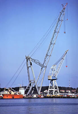 Photograph - Giant Crane by Rod Jones