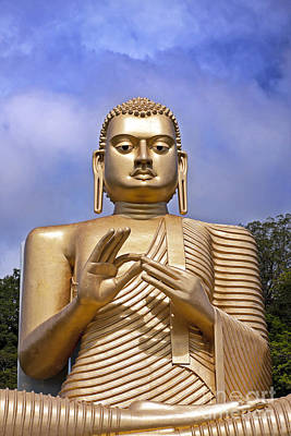 Lanka Photograph - Giant Gold Bhudda by Jane Rix