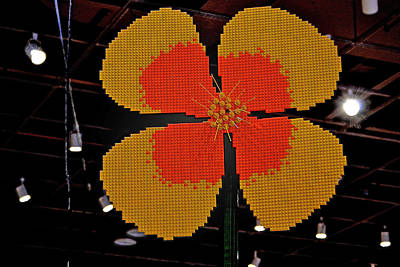 Photograph - Giant Toy Flower by Bill Owen