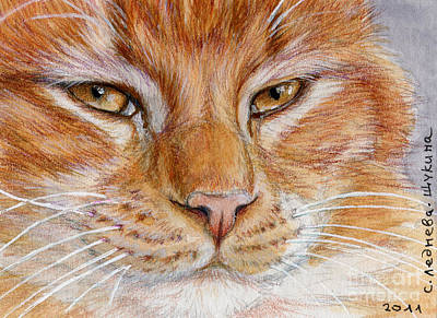 Collectible Mixed Media - Ginger Cat  by Svetlana Ledneva-Schukina