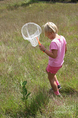 Netting Photograph - Girl Collecting Insects In A Meadow by Ted Kinsman