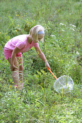 Girl Collects Insects In A Meadow Art Print
