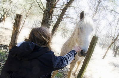 Girl Stroking Camargue Horse At Fence Art Print by Sami Sarkis
