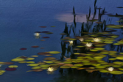 Laura James Photograph - Giverny Inspired Waterlilies by Laura James