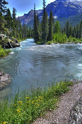 Photograph - Glacier Park Stream by Don Wolf