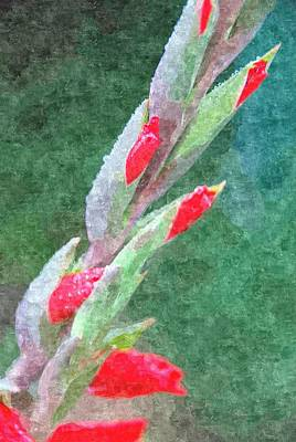 Digital Art - Gladioli Buds by Fran Woods