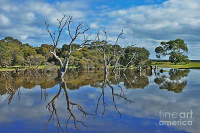 Photograph - Glass Lake by Stephen Mitchell