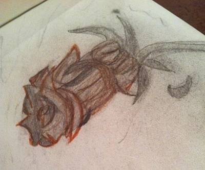 Beauty And The Beast Drawing - Glass Rose by Courtney Gainey