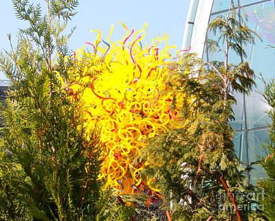 Photograph - Glass Tree Garden by Pamela Walrath