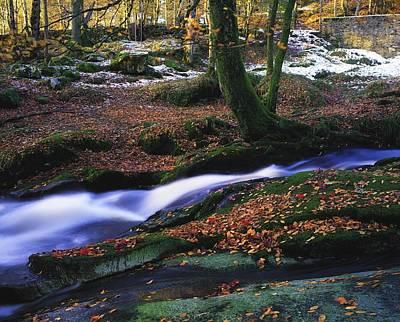 Glenmacnass Waterfall, Co Wicklow Art Print by The Irish Image Collection