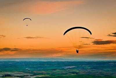 Photograph - Gliders by Niels Nielsen