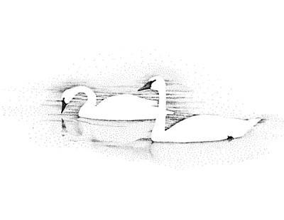 Gliding Original by Norm Holmberg