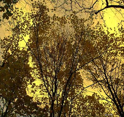 Glisten Art Print by Ed Smith