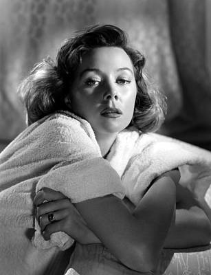 Ev-in Photograph - Gloria Grahame, 1955 by Everett