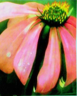 Glow Art Print by Amity Traylor