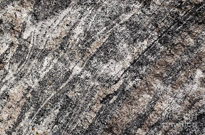 Photograph - Gneiss Rock Pattern by Les Palenik