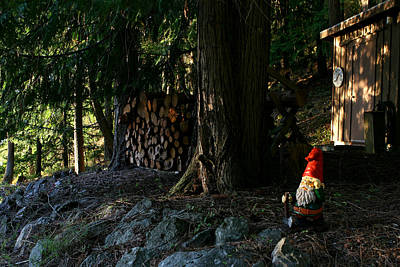 Photograph - Gnome And The Woodpile by Lorraine Devon Wilke