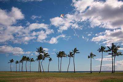 Go Fly A Kite Art Print by Craig Wood