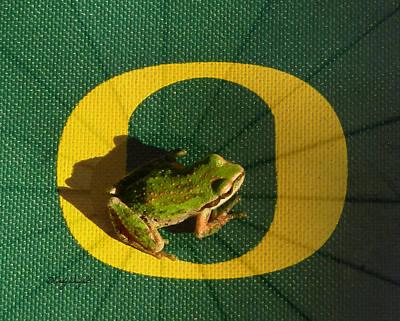 Photograph - Go Oregon Ducks by Cindy Wright