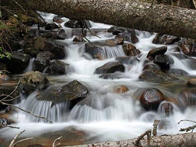 Photograph - Go With The Flow by DeeLon Merritt