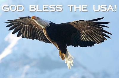 God Bless The Usa 2 Art Print by Carrie OBrien Sibley