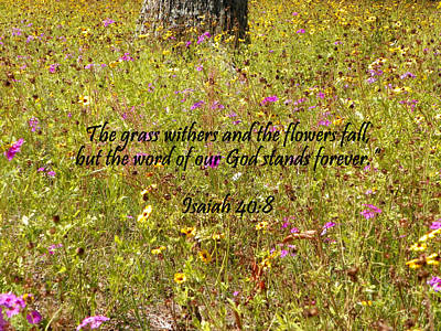Photograph - Gods Word Stands Forever by Sheri McLeroy
