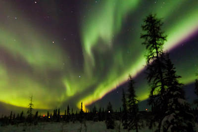 Northern Lights Photograph - Going Off by John Aldabe