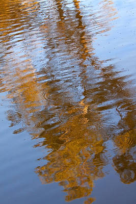 Photograph - Gold And Blue Reflections by Michelle Wrighton