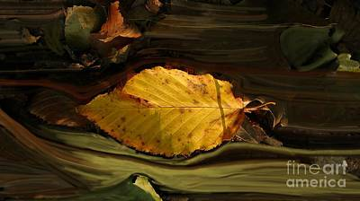 Gold Leaf Art Print by Vilas Malankar