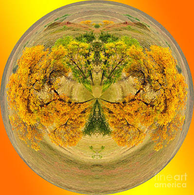 Photograph - Golden Autumn by Whispering Feather Gallery