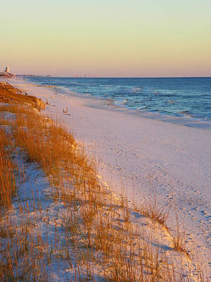 Photograph - Golden Beach by Judy Wanamaker