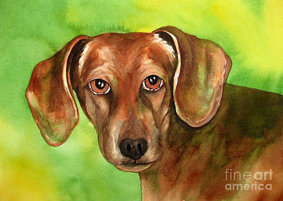 Golden Brown Dachshund Original