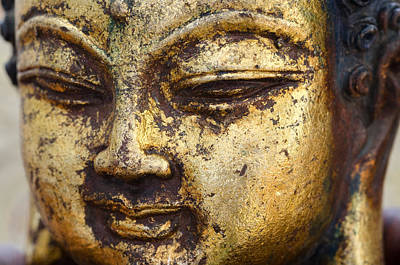Photograph - Golden Buddha by Margaret Pitcher