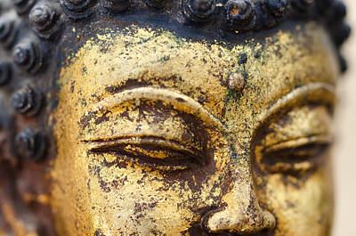 Photograph - Golden Buddha No.3 by Margaret Pitcher